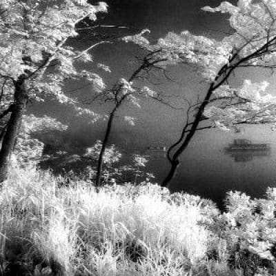 sherwood-samet-firstl